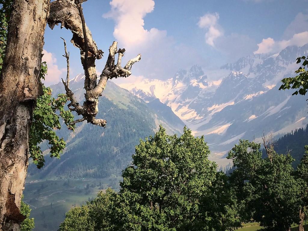 Kaschmir, 4.-7.7_Trekking12305Juli 05 2015_sm 1