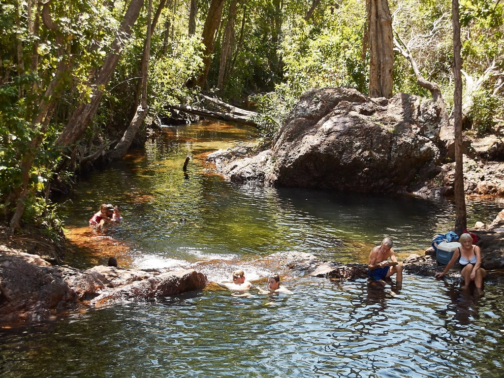 Badepools ohne Krokodile !!!