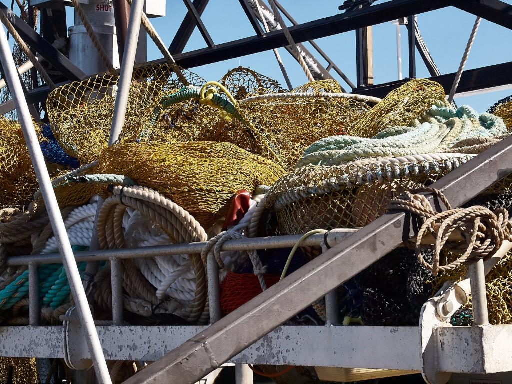 Große Fische brauchen große Netze